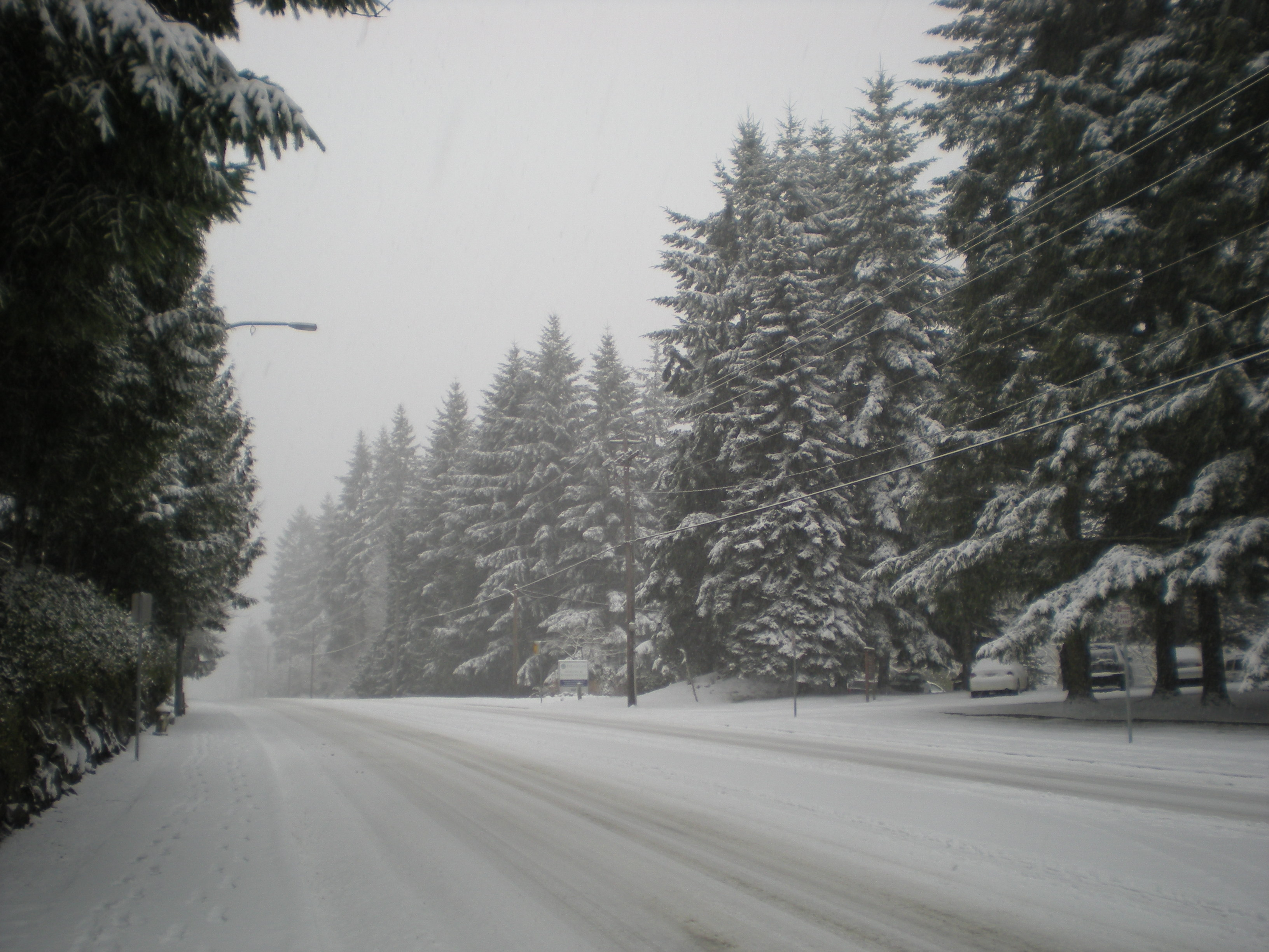 Looking Back At Snows Of December And >> The Mother Of All Convergence Zones Seattle Weather Blog