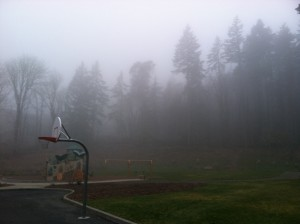 Foggy skies dominated the weather in Seattle yesterday from dawn to dusk--an all too familiar sight this winter.