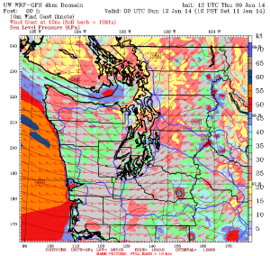 The University of Washington's WRF weather model shows peak wind gusts near 40 mph Saturday afternoon.